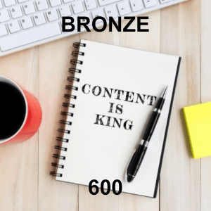 Content Writer Bronze 600 - Monthly Subscription