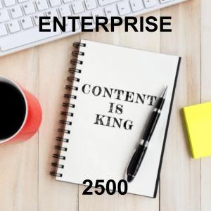Content Writer Enterprise 2500