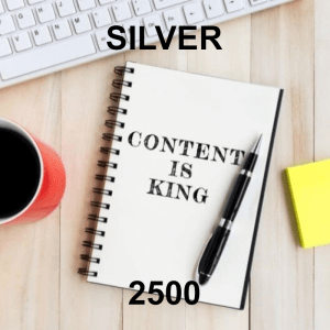 Content Writer Silver 2500 - 4 Pack - Monthly Subscription